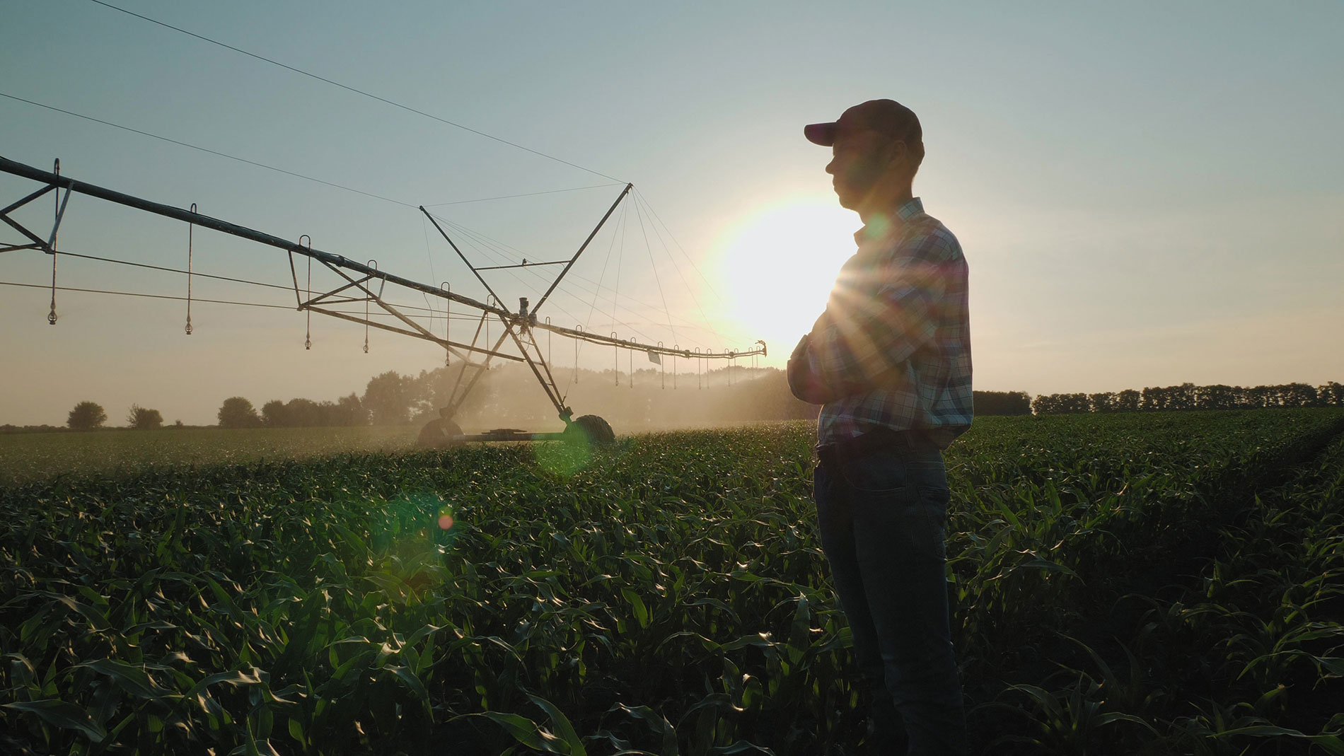 Family-Owned Businesses and Farms